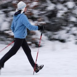 Winter Trailside Fitness - How to Adapt to the Elements