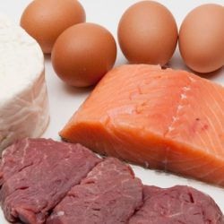 Are You Eating the Right Protein?